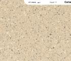 duponte284a2-corianc2ae-fossil